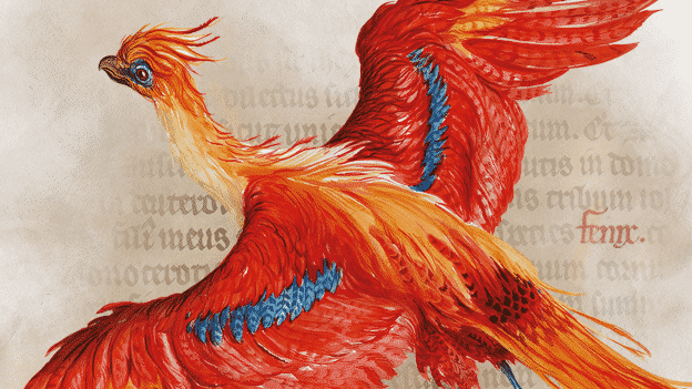 'Harry Potter: A History of Magic' Display & Events Coming Soon to Exeter Library!!
