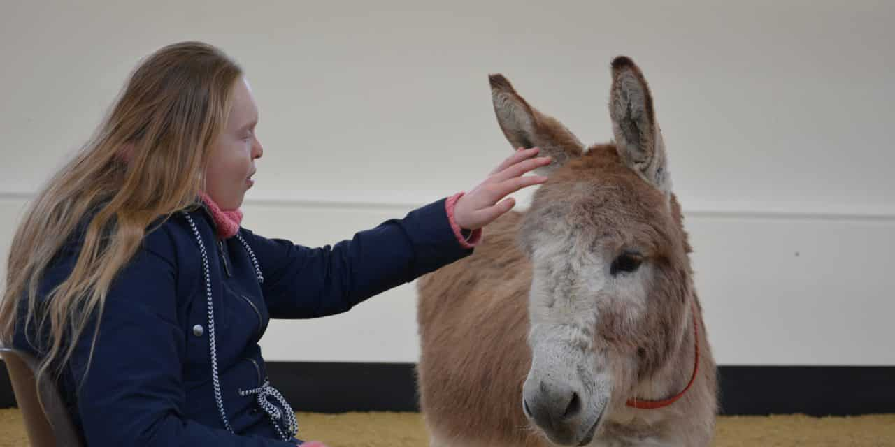 Donkey 'Therapy' Helps Autistic Young Adult Tune Into the World Around Her