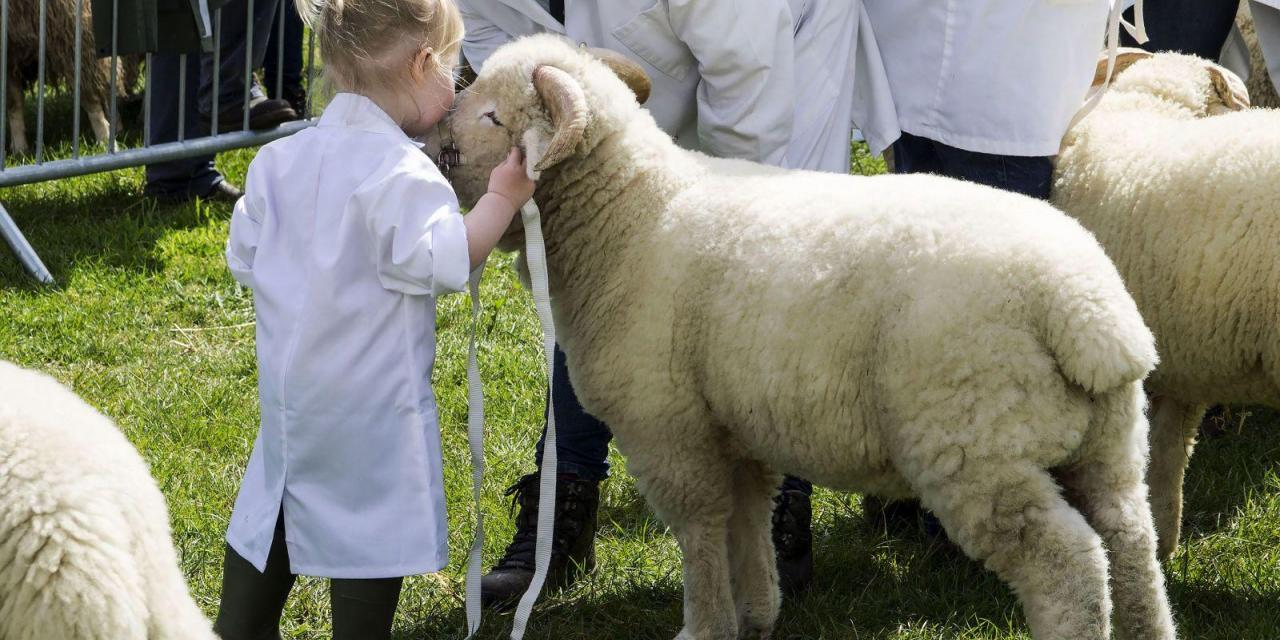 Group Tickets to the Devon County Show Now Available!