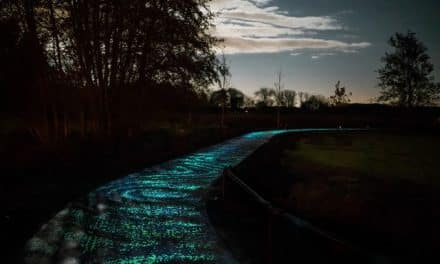 Art and Energy – Solar Art Inspires New Ways Forward in Exeter