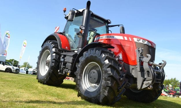 Devon County Show – a truly delightful experience