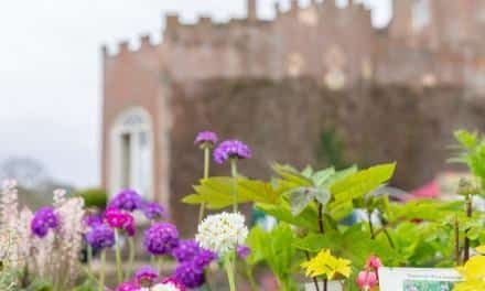 A look back at Toby's Garden Festival at Powderham Castle!