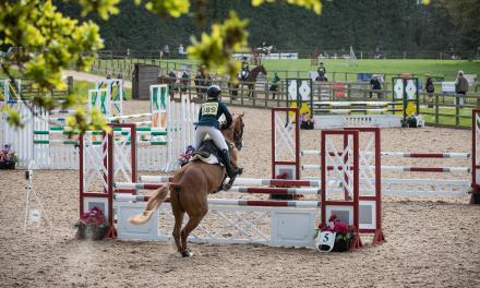 Bicton Arena named Britain's top show centre