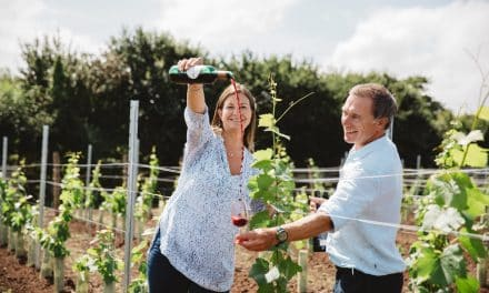 SOUTH WEST WINE SCHOOL LAUNCHES AT DARTMOUTH FOOD FESTIVAL