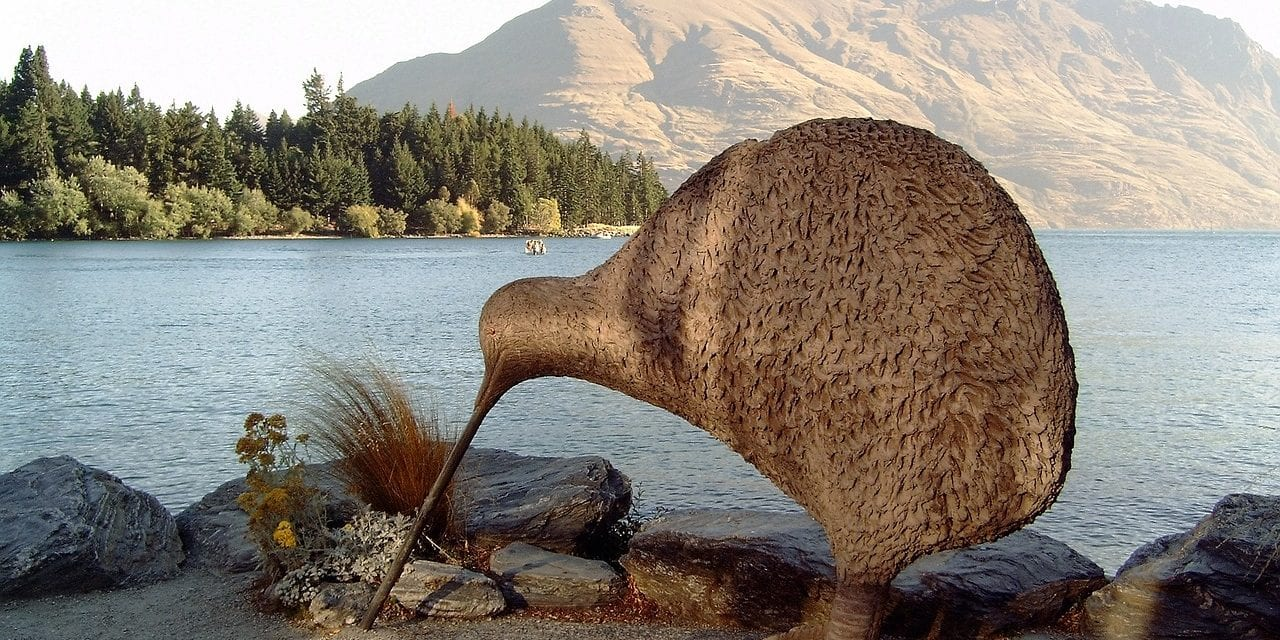 Should The World Be More Kiwi?