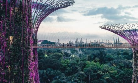 Biophilic Design; The Future Of Construction?