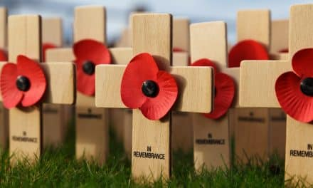 Free Bus Travel For All Armed Forces Personnel Across Devon This Remembrance Sunday