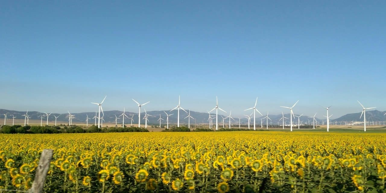EU Aims To Be Climate Neutral By 2050