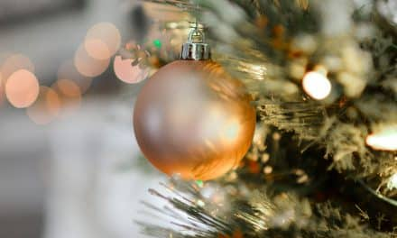 Exeter Chamber Christmas Networking Lunch