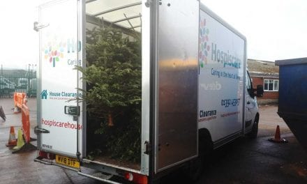 Exeter's Christmas Trees Helping the City's People and Gardens