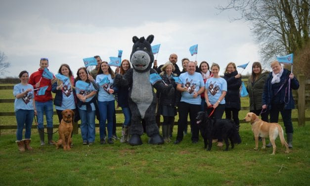 Challenge your work colleagues to 'Dawdle for Donkeys'