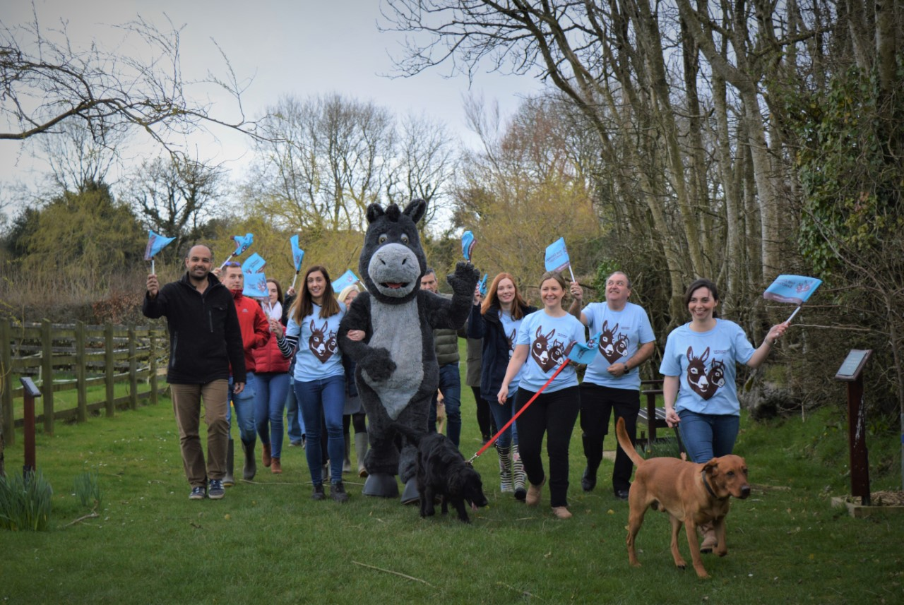 person in donkey costume with volunteers for Dawdle for Donkeys walk