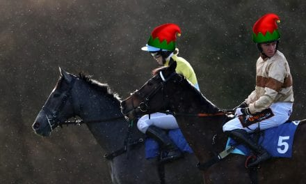 Unleash Your Inner Elf At Exeter's Festive Raceday