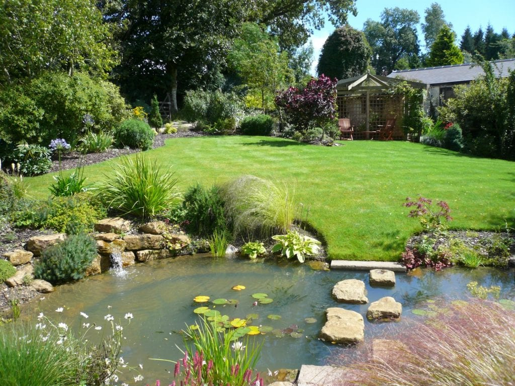 ever growing garden pond shed