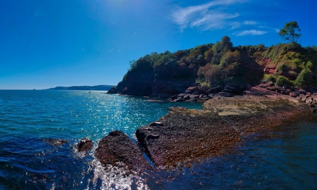 Visit South Devon To Drive Forward Its Group Travel Plan For 2020