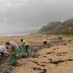 Beach Clean Data Could Boost Science – University Of Exeter