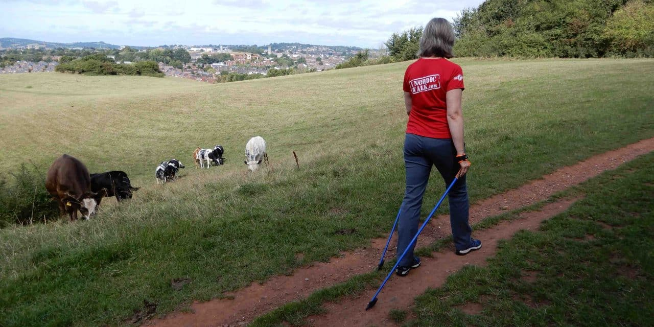 Exe Nordic Walking – Business Re-Launch During Covid-19 Is 'Poles Apart'