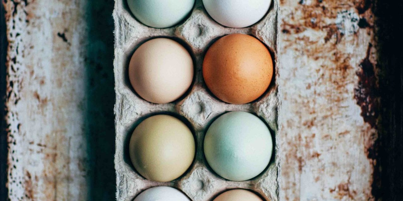 Straight Talk – A Dozen Eggs