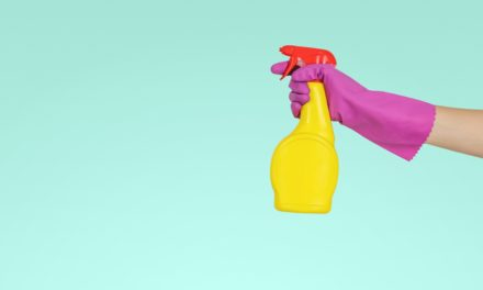 Female-led start-up, Pleasant State, set to eliminate single-use plastics from the typical household cleaning routine.
