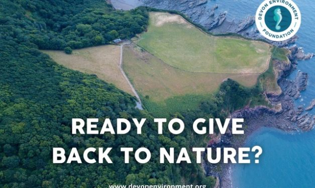 Nature Regeneration Project Launched in Devon